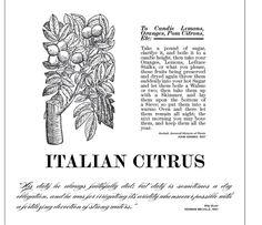 Italian Citrus | D.S. & Durga