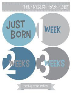 Baby Month Milestone Stickers, Milestone Stickers - Blue, Grey, Baby Boy, Boy, NEWBORN SET