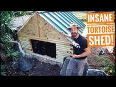 Watch me build my biggest and best tortoise house (or shed) for my giant galapagos and aldabra torts in their habitat! I used lots of scrap and recycled mate. Tortoise House, Tortoise Habitat, Turtle Habitat, Giant Tortoise, Tortoise Turtle, Outdoor Tortoise Enclosure, Turtle Tanks, Turtle Enclosure, Sulcata Tortoise