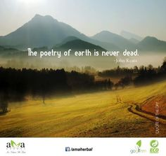 Agree?? The poetry of #Earth is never dead. ~ John Keats #Quoteoftheday. Click here: https://www.facebook.com/amaherbal/photos/a.283777945111081.1073741829.274434279378781/500123986809808/?type=1&theater…