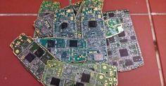 Bacterias que resucitan teléfonos móviles en desuso - Contenido seleccionado con la ayuda de http://r4s.to/r4s