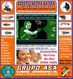 ADDA-Angra Dedetização e Desinfecção Ambiental Rio