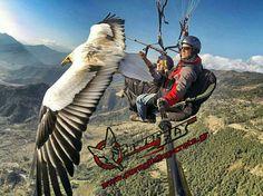 Tandem paragliding crete PowwrFLYteam