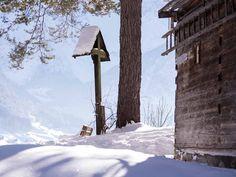 VALAVIER Aktivresort - Angebote Winter, Winter Time, Winter Fashion