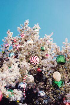 decorated christmas tree at Big Bear Lake, CA