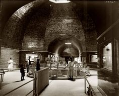 The Belle Isle Park Aquarium in Detroit circa 1905. Its cavernous spaces and glass viewports afforded aquatic life a fascinating peek at the bipedal terrestrial creatures known as homo sapiens. Detroit Publishing Co.  It wasn't 1905 when I went.