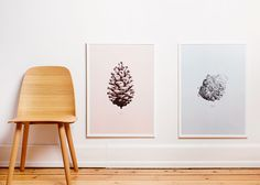 Form Us With Love depicts huge natural objects for graphics collection