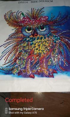 Owl diamond art Camera Shots, Owl Bird, Diamond Art, Arts And Crafts, Artwork, Work Of Art, Gift Crafts, Art And Craft