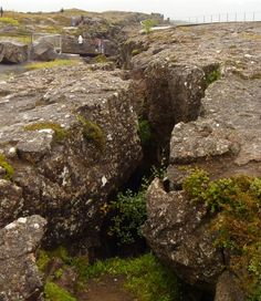 Thingvellir, Iceland #travel