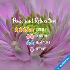 Peace and Relaxation