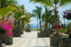 Playa Taurito - Gran Canaria - Spain