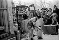 De ZOO in 1968, nieuwe inwoners worden naar hun verblijf gebracht.