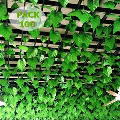 100PC 82ft Artificial Grape Ivy vine faux Leaf Garland Plants Fake Foliage Decor in Home, Furniture & DIY, Home Decor, Dried & Artificial Flowers | eBay!