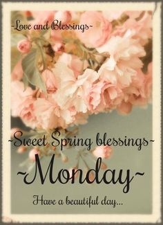 Happy Monday! ❤️