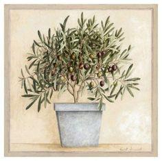 Vincent Jeannerot .. ботанические Картинки. Обсуждение на LiveInternet - Российский Сервис Онлайн-Дневников