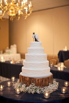 white wedding cake. bird wedding cake toppers. baby's breath. Tree stump cake stand.