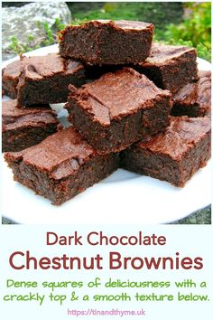 Dense chocolatey squares of deliciousness that taste of both chocolate and chestnuts. These chestnut brownies have crisp tops followed by deep dark smoothness below. A quick and easy one pan method that leaves little in the way of washing up. #TinandThyme #ChocolateBrownies #ChestnutBrownies #ChestnutRecipes #ChocolateChestnut Muffin Recipes, Baking Recipes, Whole Food Recipes, Tasty Chocolate Cake, Chocolate Log, Chestnut Recipes, Ganache Recipe, No Bake Cake, Pie Cake