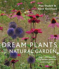 Dream Plants for the Garden: Over 1,200 Beautiful and Reliable Plants for a Garden