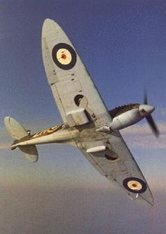 The iconic Spitfire! I see one of the few left flying over my house sometimes, the unmistakable drone is so evocotive, I would love to go up in one!