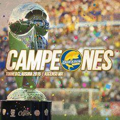 Arte para Dorados de Sinaloa que nos acredita como campeones del torneo clausura 2015.