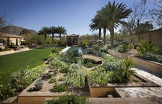 modern desert landscaping design pictures remodel decor and ideas page 2 - Desert Landscape Design Ideas