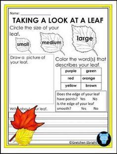 "FREE SCIENCE LESSON - ""Fall Leaf Observation Sheet: Science Center Activity"" - Go to The Best of Teacher Entrepreneurs for this and hundreds of free lessons. Kindergarten - 2nd Grade   #FreeLesson  #Science   http://thebestofteacherentrepreneursiv.blogspot.com.co/2016/10/free-science-lesson-fall-leaf.html"