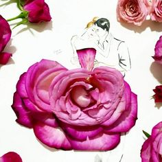 Floral illustrations by Grace Ciao