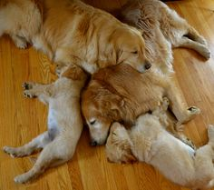 Group nap