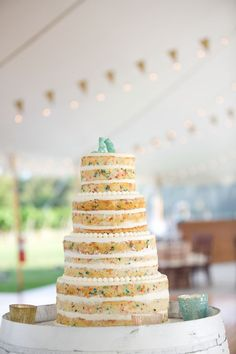 naked funfetti wedding cake, photo by Lens CAP Photography http://ruffledblog.com/new-england-vineyard-wedding #weddingcake #cakes