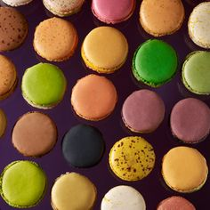 Macarons from Pierre Herme - just saw the shop on Lorraine Pascale's Saturday Morning show, where she went to Paris and bought macaroons from here (then showed how to make macaroons!)