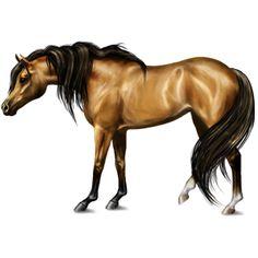 Serenity by мαℓιиεε, Pferd Araber Falbe #7230526 - Howrse