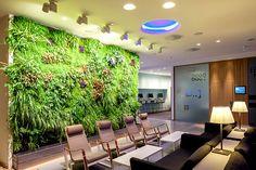 Living Walls - Een muur van planten is uitermate geschikt in kantoren.Een groene 'Living Wall' in dit superstrakke, zeer witte kantoorinterieur. De planten zorgenvoor de juiste accentkleur. Gecombineerd met een mooie houten tafel maakt het een goed voorbeeld van eennatuurlijkerkantoor.- More office interior inspiration on http://www.stylingblog.nl