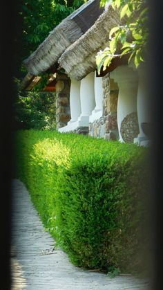 Salföld igazi hungarikum | TubeWorld & FilmNews Heart Of Europe, Country Style Homes, Budapest Hungary, Traditional House, Provence, Journey, Cottage, World, House Styles