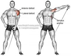 Cable one-arm lateral raise instructions and video Cable one arm lateral raise. Main muscles worked: Lateral Deltoid, Anterior Deltoid, Supraspinatus, Middle and Lower Trapezii, and Serratus Anterior. Fitness Gym, Sport Fitness, Muscle Fitness, Physical Fitness, Mens Fitness, Corps Fitness, Fitness Shirts, Fitness Motivation, Health Fitness