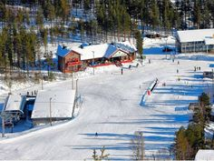 Pyha: In the Lapland of the gods - Skiing - Travel - The Independent
