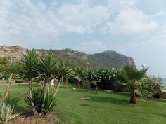 Turcja okiem nieobiektywnym: Alanya na weekend Golf Courses, Alanya