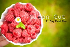 Clean Gut 21 Day Meal Plan