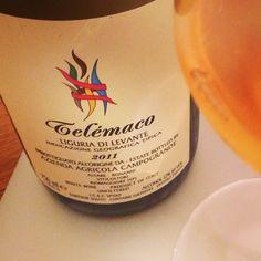 Azienda Agricola Campogrande Telemaco 2011 Ligurien, Italien Ein Wein der ob seiner Optik als Orangewein durchgehen mag jedoch keiner ist. Ein salziges Weißweinvergnügen mit nussigem Bouquet, rohem Fleisch, weißen Blüten aber auch viel reifer Nektarine. Bleibt salzig und knochentrocken am Gaumen und immer sehr harmonisch. Das erinnert an einen gereiften Meursault in seiner Art, ist aber ganz eigenständig.