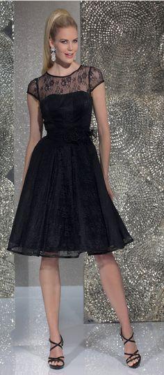 Isabel de Mestre - Evenings Abendkleider Kollektion 2016 (Art.15E656): Kurzes Abendkleid in  Schwarz mit Spitze.