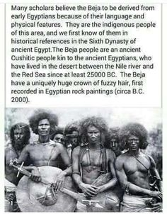 History Quotes, History Books, World History, History Images, Art History, Black History Month, Black History Facts, Native American History, British History