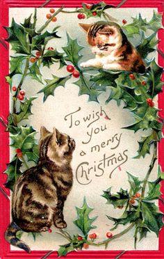 Ima boop this holly! Cat Christmas Cards, Christmas Kitten, Noel Christmas, Christmas Animals, Retro Christmas, Christmas Greetings, Christmas Postcards, Holiday Cards, Xmas