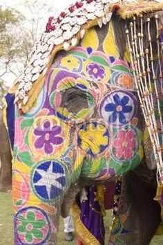 Id love to see a painted elephant up close Painted Indian Elephant, Elephant Love, African Elephant, Painted Elephants, All About Elephants, Baby Elephants, Giraffes, Elephant Photography, Animal Photography