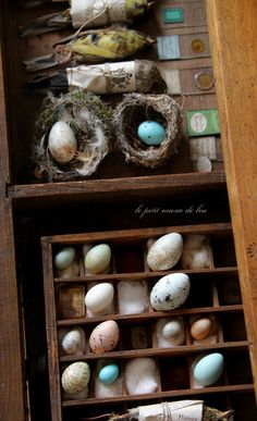 I love the old drawer and though I wouldn't know how to preserve an egg (maybe those are fake), this is a neat idea.