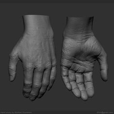 Started as a speedsculpt and decided to go into details. Used xyz textures as a base, forgot to use Layers etc but still happy with the result, learned a lot during this study) Thanks for the many feedbacks I got from friends! Hand Anatomy, Human Anatomy Art, Anatomy Study, Anatomy Drawing, Zbrush, Hand Reference, Anatomy Reference, Anatomy Sculpture, Digital Sculpting