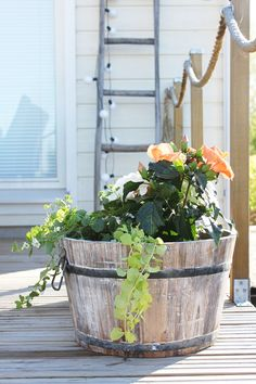 I love the rope banister! NO HOME WITHOUT YOU: GARDEN