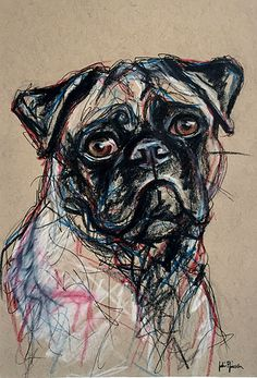 Pug Art - Pet Portrait Drawing Pencil, pen and colored pencil on tan toned paper commissions:  www.juliepfirsch.com