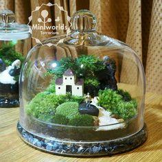 "16 Likes, 2 Comments - สวนขวดแก้ว ""Miniworlds"" (@miniworlds.terrarium) on Instagram: ""#miniworld #terrarium #moss #mossterrariums #gardens #gardening #minifigures #green #bangkok…"""