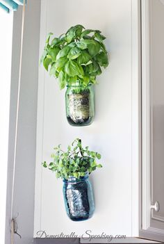 Green plants add a breath of life to any kitchen, and these mason jar herb containers can squeeze into even the smallest kitchens and nooks. Try them anywhere near a window.