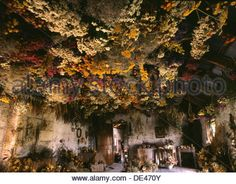 Stock Photo - Dried flowers hang in bunches from the tin ceiling at Three Spring Station Bunch Of Flowers, Dried Flowers, Flower Ceiling, Ceiling Treatments, Space Images, Garden Living, Grey Walls, Giclee Print, Flower Arrangements