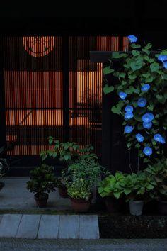 thekimonogallery: Via Photo Hito Japan. Japanese Style House, Japanese Modern, Japanese Interior, Japanese Aesthetic, Japanese Design, Japanese Culture, Japanese Art, Japanese Garden Plants, Japan Garden